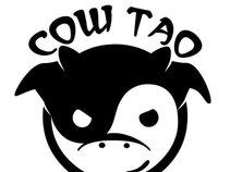 Cowtao Studios