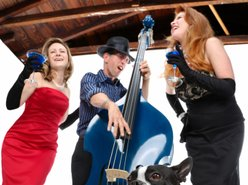 Image for The Blue Delilahs Band