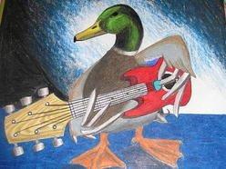 Image for DuckShepherd