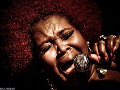 Image for MS. SILKY SOL - THE RED AFRO QUEEN