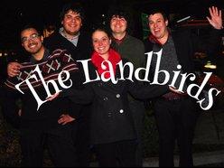 Image for The Landbirds