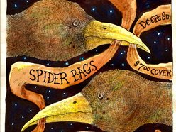 the spider bags