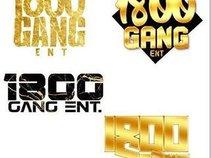 1800 Gang ent