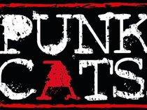 Punk Cats