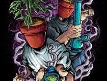 Urban Hippie & Paradox