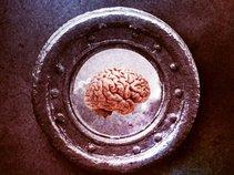 Like Mind Protocol