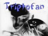 Triptofan_worldwide