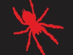 Spider Gods