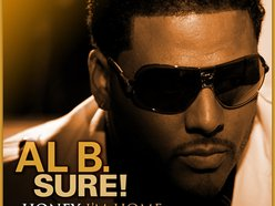 Image for Al B. Sure!