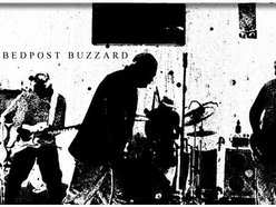 Image for Bedpost Buzzards