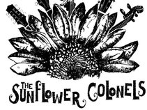 Sunflower Colonels