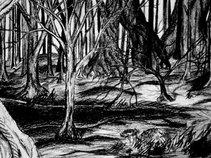 Darkmysticwoods
