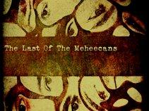 Meheecans