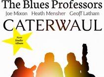 The Blues Professors