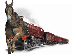 Image for The MuleTrain Express