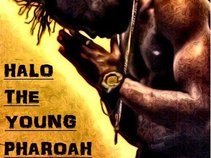 HALO THE YOUNG PHAROAH