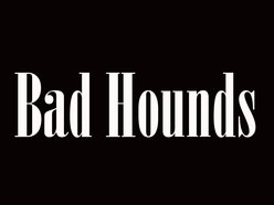 Image for Bad Hounds