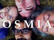 Osmia