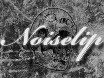 NoiseLip
