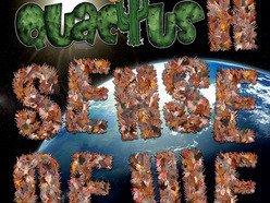 Image for Quactus