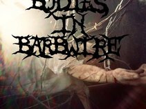 Bodies in Barbwire