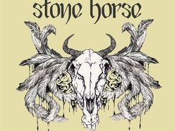 Image for Stone Horse