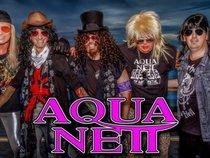 Aqua Nett