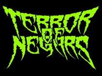 Terror Of Negars