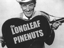 Longleaf Pine Nuts