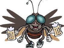 Bar Flys