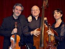 Celtic Arts Trio