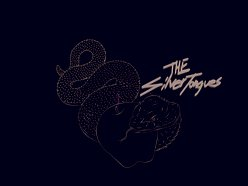 Image for The Silvertongues