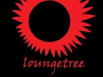 Loungetree