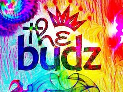 Image for The budz