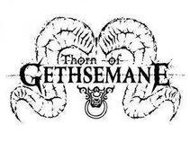 Thorn Of Gethsemane