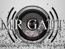 Mr Gatt