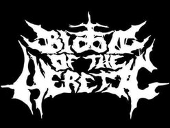 Image for Blood of the Heretic