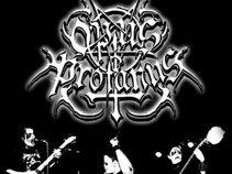 Opus profanus
