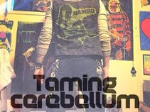 Taming Cerebellum