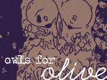 Owls for Olive