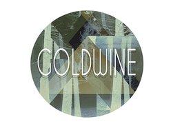 Image for Goldwine