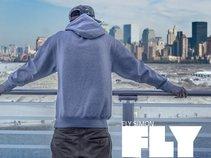 Fly Simon