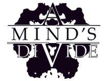 A Mind's Divide