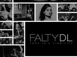 Image for FaltyDL