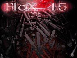 Flex 45