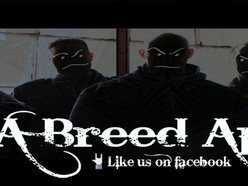 Image for A Breed Apart