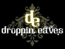 Droppin Eaves Band