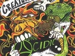 Image for ACIDIC