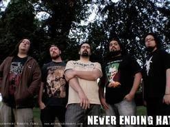 Never Ending Hate