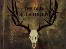 The Old Buckthorn
